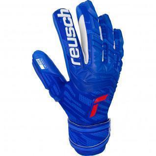 Goalkeeper gloves Reusch Attrakt Freegel Gold