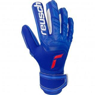 Reusch Attrakt Freegel Silver Gloves