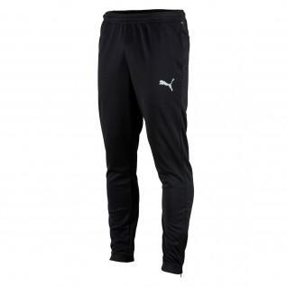 Puma Teamrise poly training pants