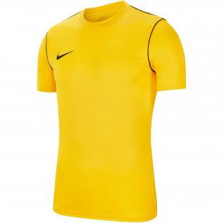 Jersey Nike Dri-FIT Park