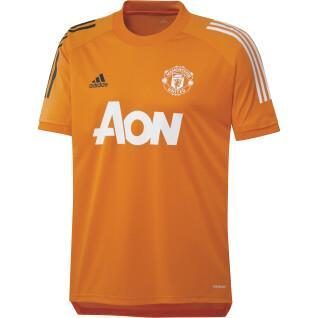 Manchester United Training 2020/21 jersey