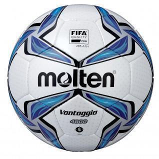 Molten ball FV4800 Size 5